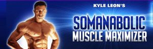 somanbolic workout