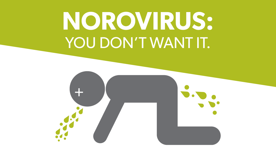 what is norovirus