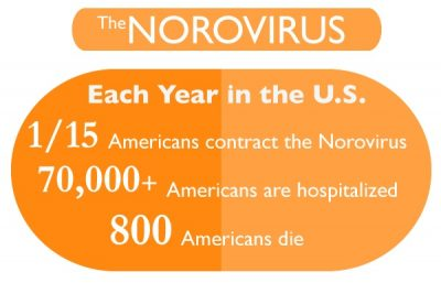 norovirus outbreak cruise ship