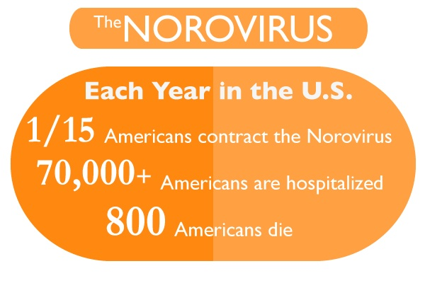 norovirus treatment