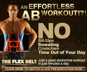 the flex belt review