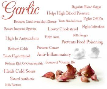 garlic benefits