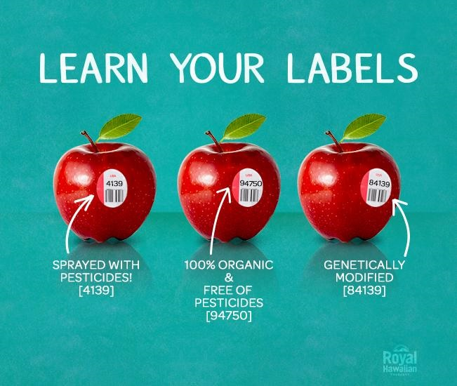 how to find gmo
