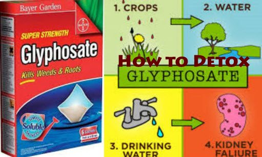 detox glyphosate