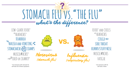 stomach flu vs influenza