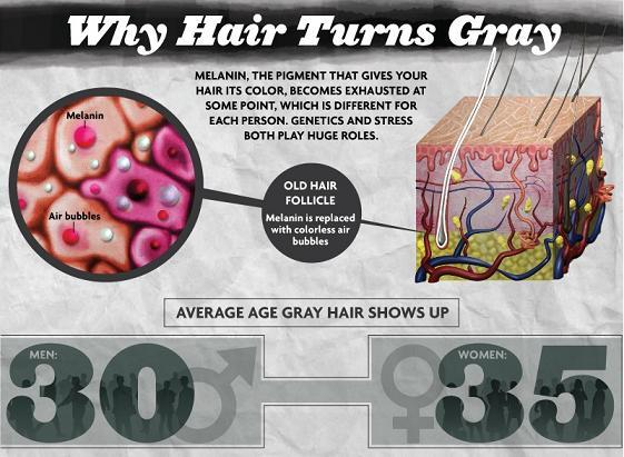 causes of graying hair