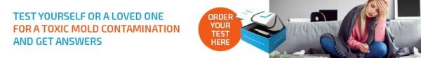 mycotoxin test kit