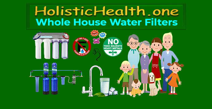 best whole house water filters